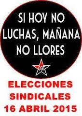 RESULTADOS ELECCIONES SINDICALES 2015