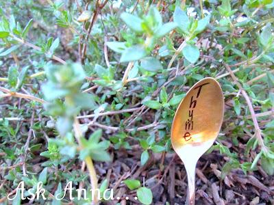 Silver+Spoon+Herb+Markers+-+09.jpg