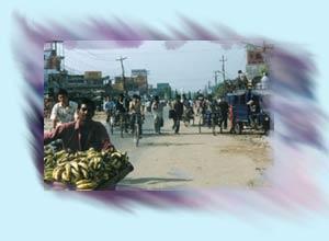 Info Nepal: Terai Region Of Nepal