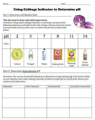 Free download of student worksheet for a cabbage pH indicator lab: from STEMmom.org