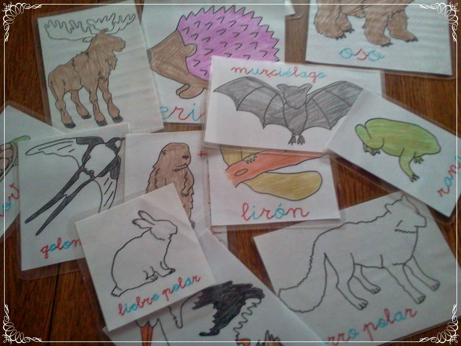 Worksheet. Lpices de colores y madera Animales que emigran animales que