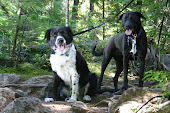 Watson & Daisy