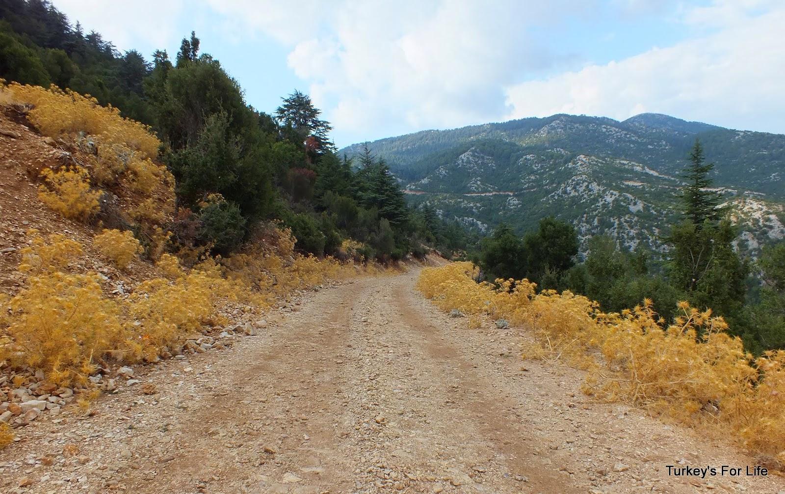 Driving Up Babadağ Mountain, Ölüdeniz, Fethiye