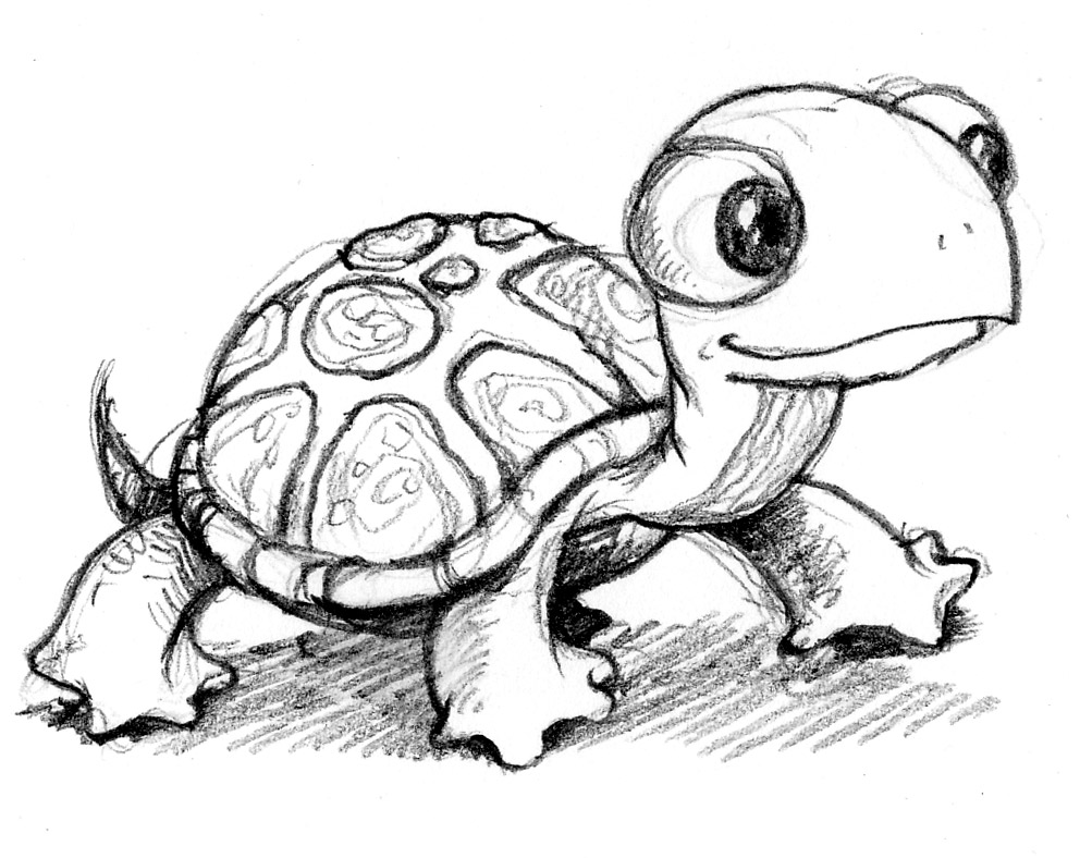 Easy cute turtle drawings - photo#3