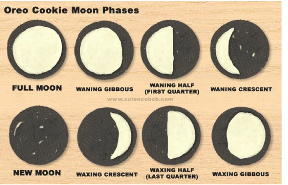 moon phases model how to make
