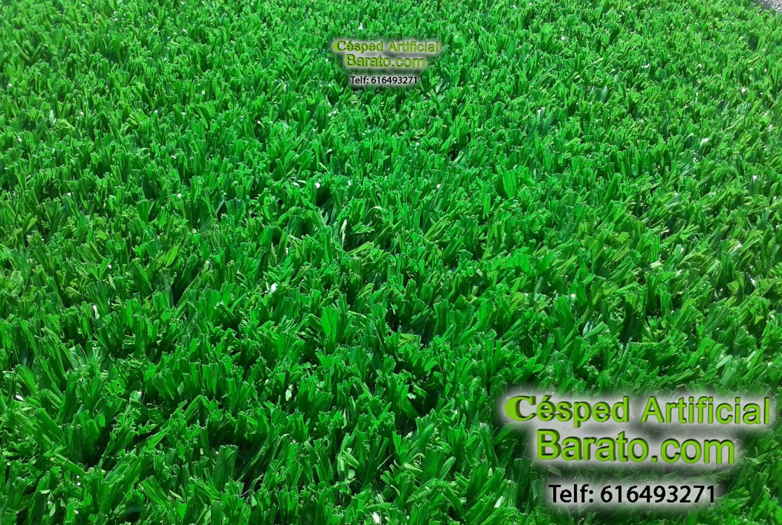Cesped artificial terrazas cesped artificial barato para - Cesped artificial para jardin ...