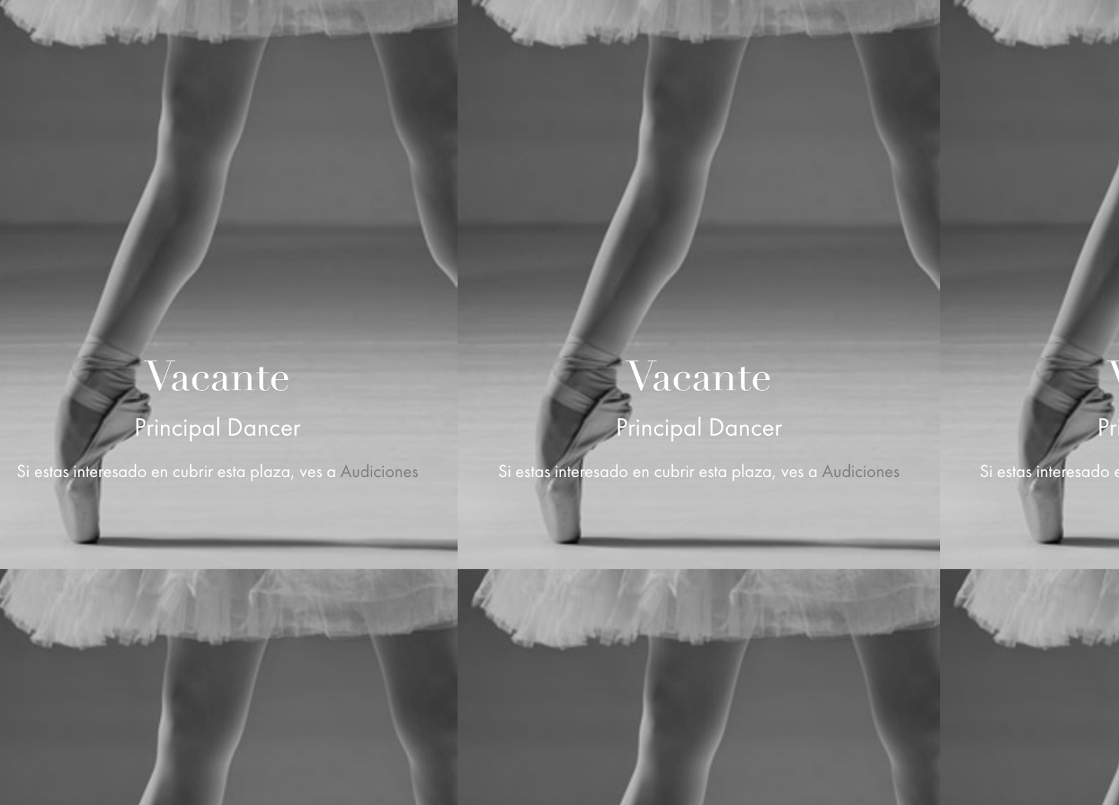 Audiciones para el Ballet de Catalunya