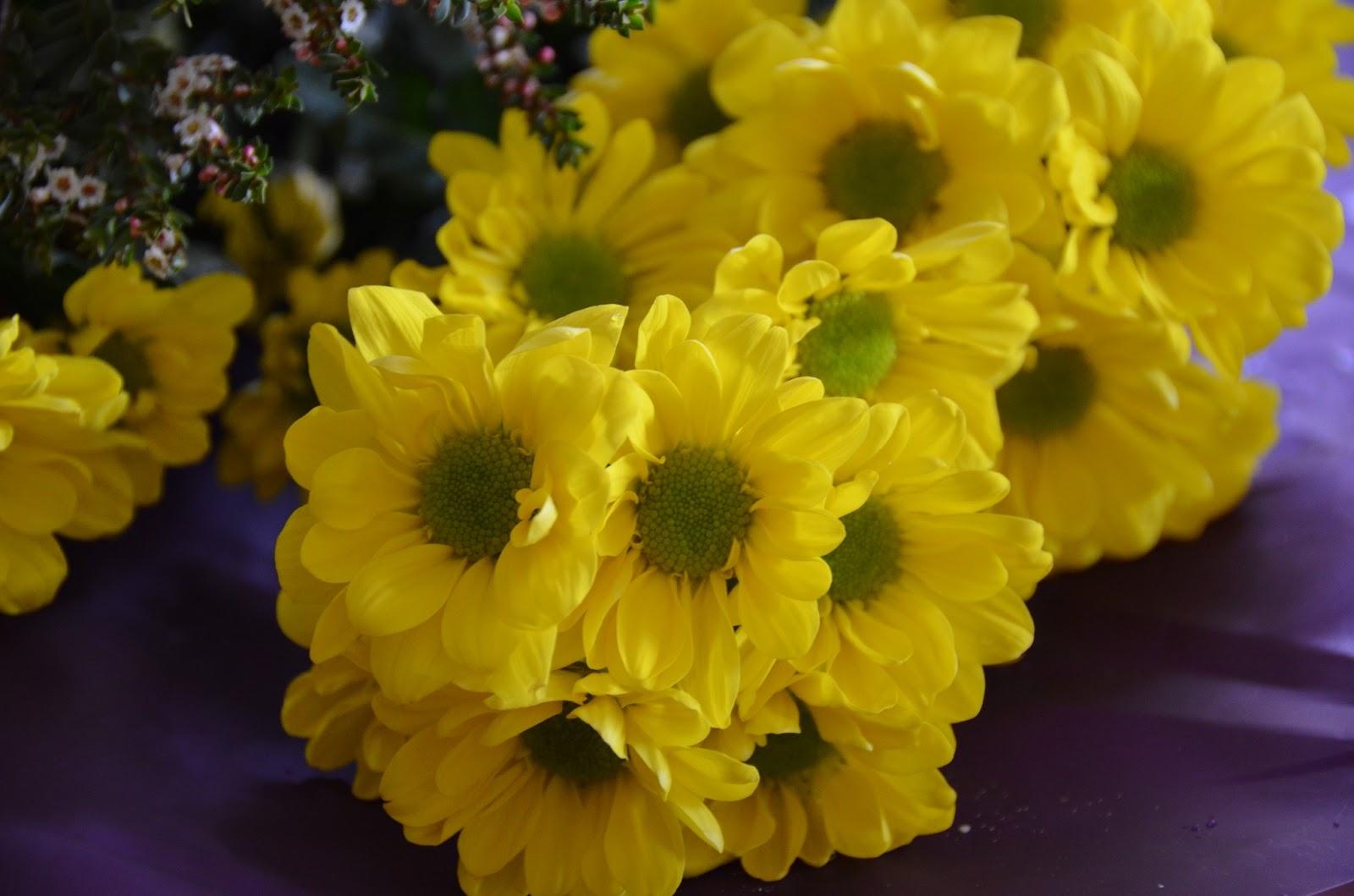 Disclosed Wonders Diy Easy Fresh Flower Crown