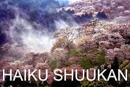 VISIT MY WEEKLY HAIKU MEME