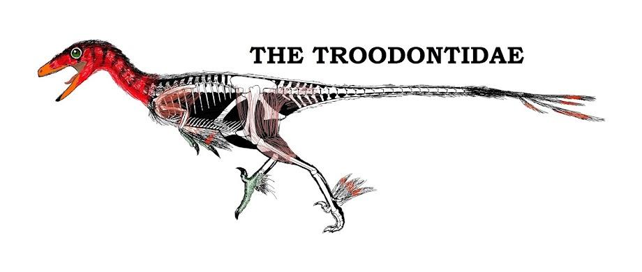 The Troodontidae