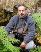 Alfredo Valiente