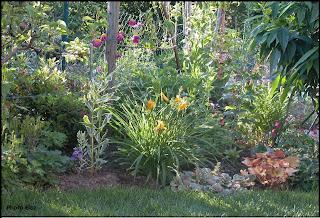 Un giardino di perenni in ticino manca poco for Aiuole perenni