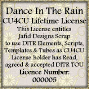 DITR CU4CU Lifetime License