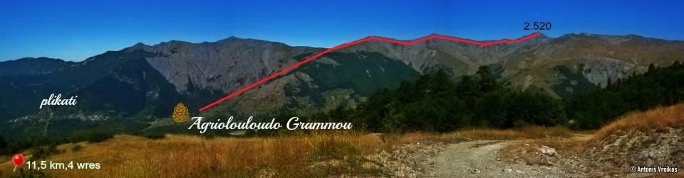 Το Αγριολούλουδο του Γράμμου-Hotel in Mountain Grammos
