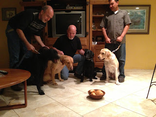 All five pups in a semi circle around a bowl of rolls.  Of course they are being held back by Fred, Ed and Dave.  Petey is the only one on a loose leash.