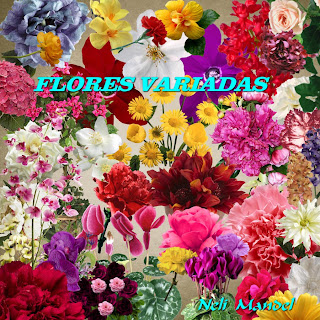 "Free scrapbook elements ""Assorted Flowers 2"" from Lugar Encantado da Neli - FS"