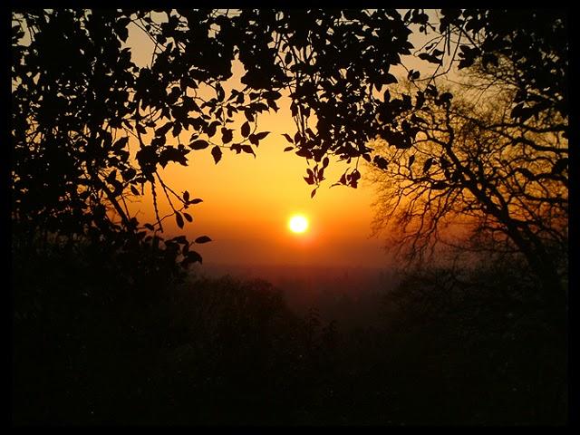 digital photography richmond park sunset
