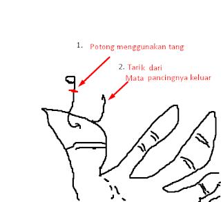 Cara melepaskan Pancing/Patis
