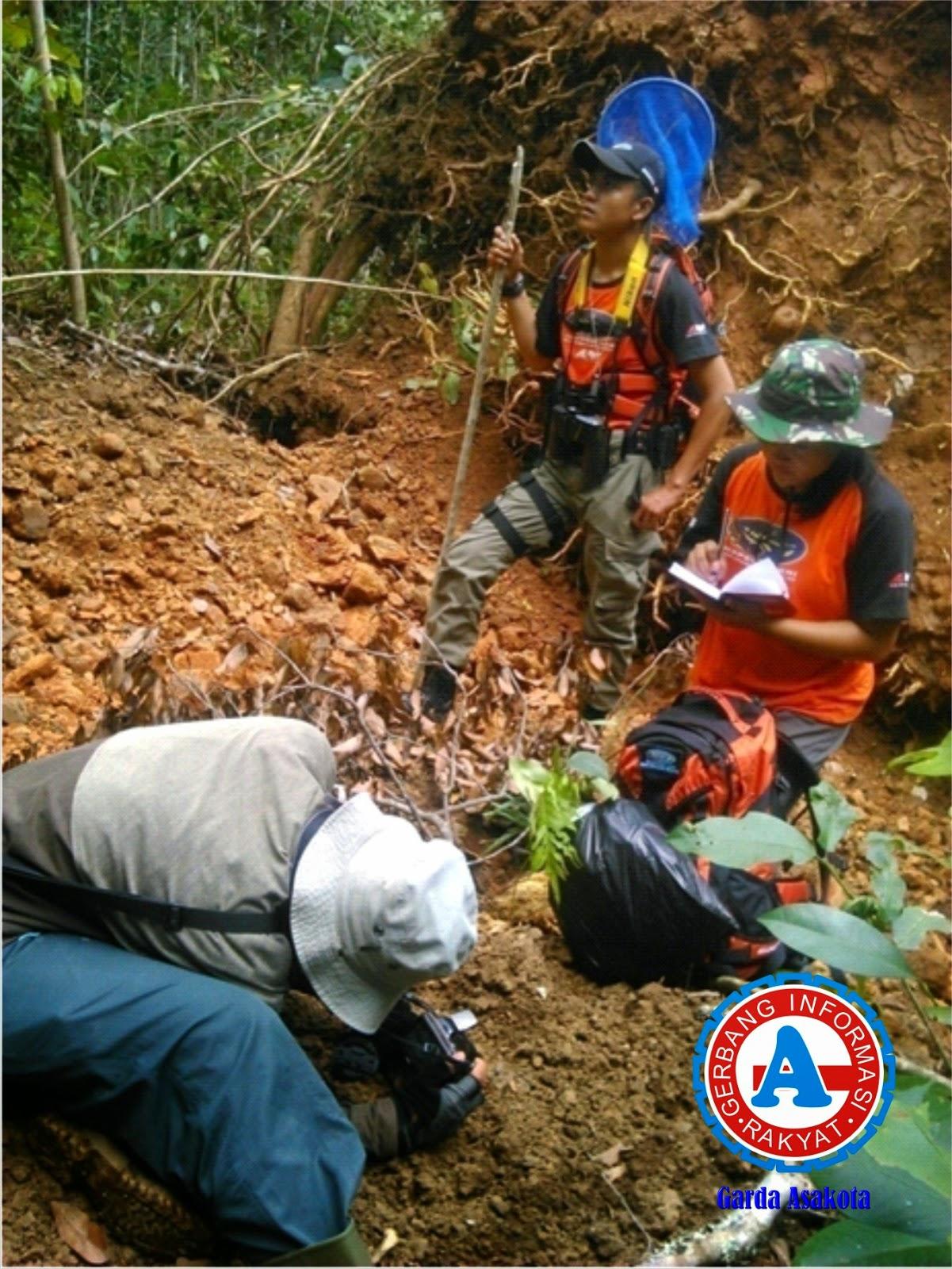 Tim Ekspedisi NKRI Temukan Ratusan Flora dan Fauna Baru di Kabupaten Bima