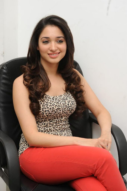 Tamanna Hot Photo Gallery, wallpapers free,photo galleries,gallery of pics,photography gallery,Free Photos Download