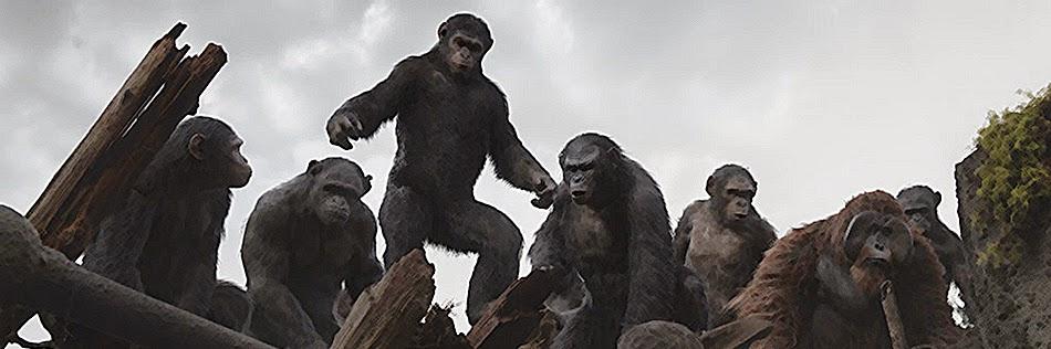 近期喜愛的電影:猿人爭霸戰: 猩凶崛起