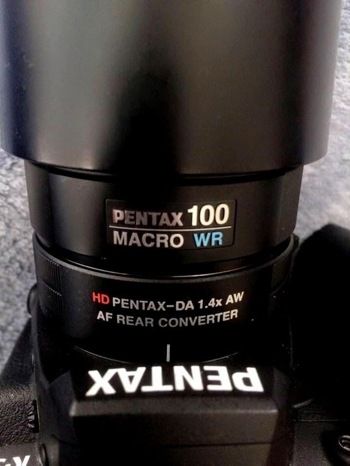 分享 pentax 1.4x hd aw with pentax 100mm f2.8 macro