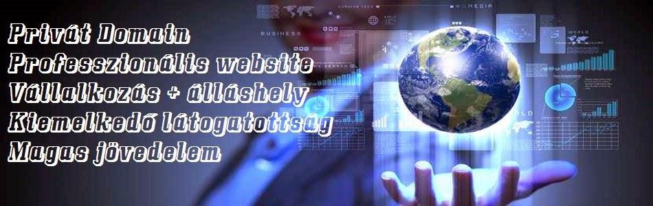 Professzionális Domain Website