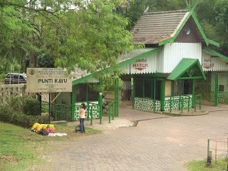 Punti Kayu