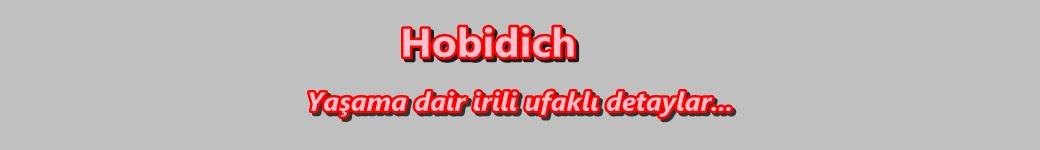Hobidich