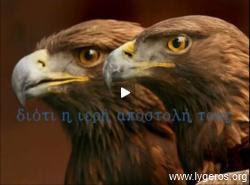 Νίκος Λυγερός - Ελληνική ΑΟΖ: Αετίσια βλέμματα