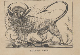 Illustration of Rolling Calf