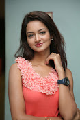 Cute Shanvi Glamorous Photos Gallery-thumbnail-17