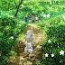 Download Anime  Ano Hi Mita Hana no Name wo Bokutachi wa Mada Shiranai - Menma he no Tegami Subtitle Indonesia