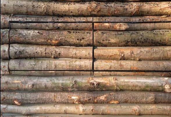 gambar desain rumah kayu gambar desain rumah kayu gambar desain rumah ...