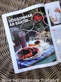 Allt om Trädgård nr 11 2014
