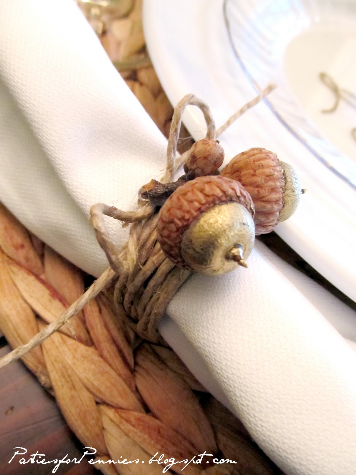 Thanksgiving table white house quality on a dollar menu for Napkin rings for thanksgiving