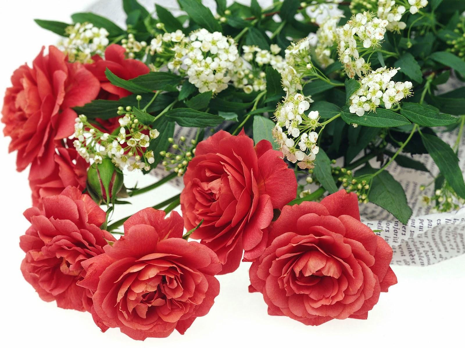 Kumpulan Gambar Bunga Romantis I Love You Animasi