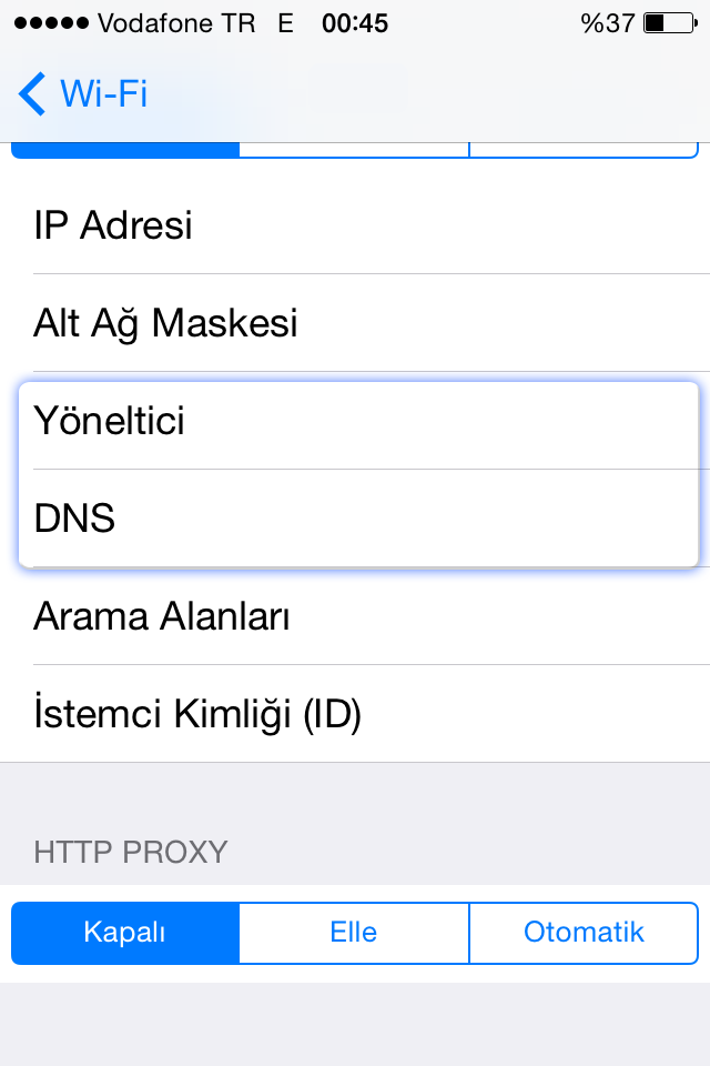 Iphone DNS