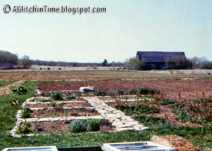 Spring Homestead 1982 (approx.)