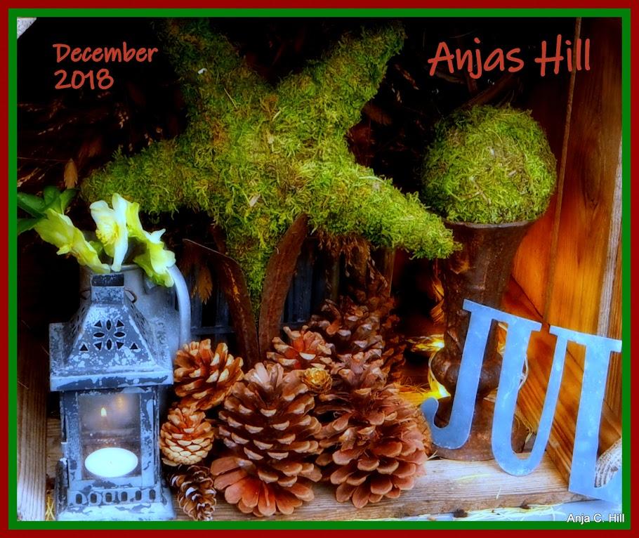 Anjas Hill