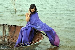 nikitha_narayana_hot_saree_stills_photos_006.jpg