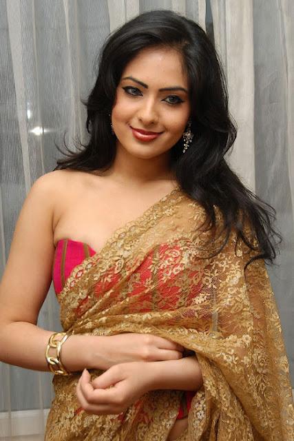 Nikesha Patel in Modern Saree Wallpapers