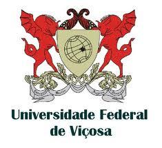 Concurso-UFV-MG