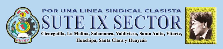 PAGINA WEB DEL COMITÉ EJECUTIVO DEL SUTE NOVENO SECTOR DE LIMA