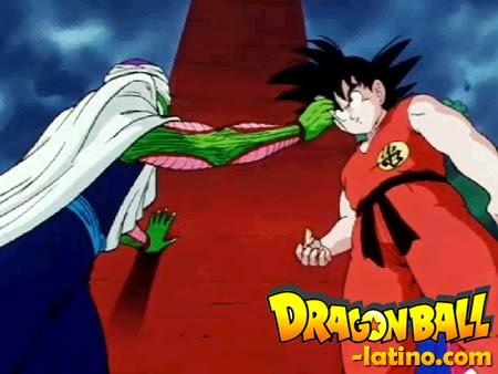 Dragon Ball capitulo 143