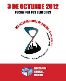 DIA INTERNACIONAL DE ACCION 2012 DECLARACIÓN INTERNACIONAL
