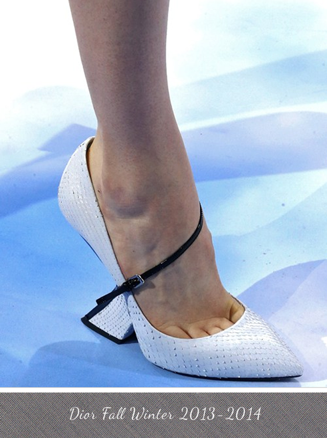 Dior Shoe Fall Winter 2013 - 2014