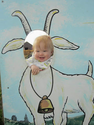 baby goat cut out
