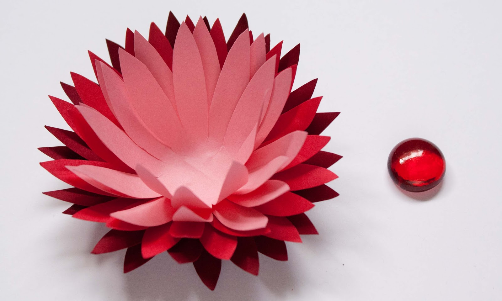 M Double M Ombre Water Lily Paper Flower Tutorial