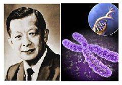 Prestasi Ilmuwan Indonesia Yang Mempengaruhi Dunia